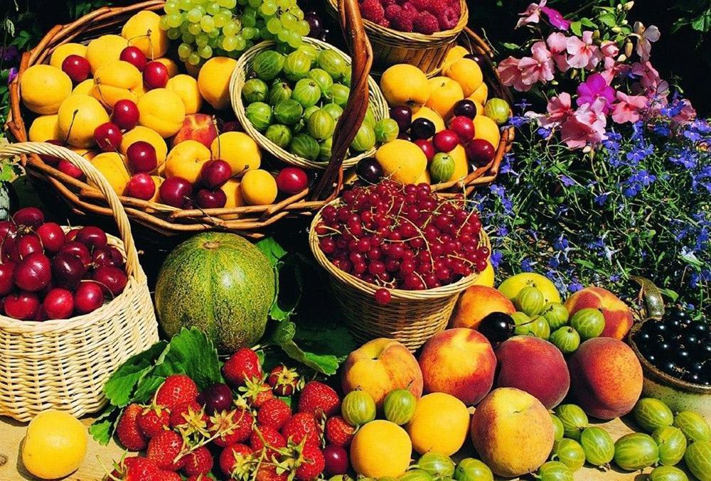 درمان 7 نوع بیماری با 7 نوع خوراکی