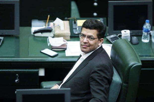 اسماعیلی: حذف یارانه موالید خلاف رویه کشور است، طی 10 روز دولت اقدامی نکند قطعاً مجلس ورود می کند