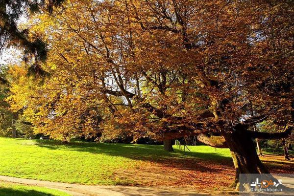 پارک بوت شومون؛ پنجمین پارک بزرگ پاریس