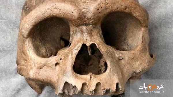 رازی عجیب در پی پیدا شدن یک جمجمه قدیمی در چین